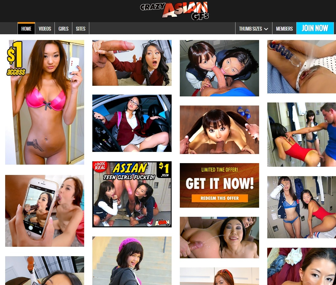 Asian Porn Sites - Crazy Asian GFs